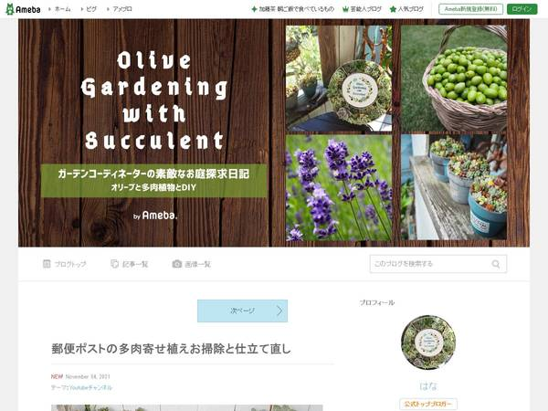 OliveGardening with Succulent